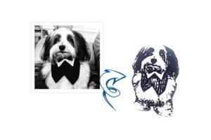 ba-tuxdog-beforeandafter